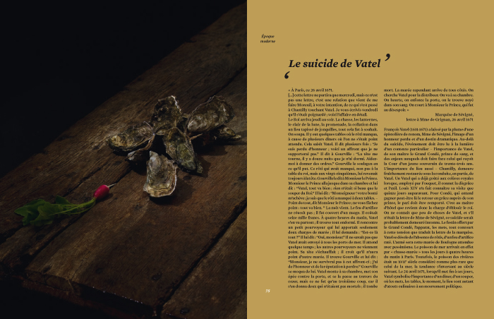 delphinedelastre_histoire_7475